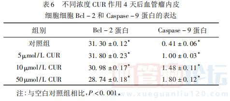 姜黄素对血管瘤内皮细胞凋亡的诱导作用及对Bcl-2和Bax蛋白表达的调控 ... ..._血管瘤论坛-中国血管瘤患者之家